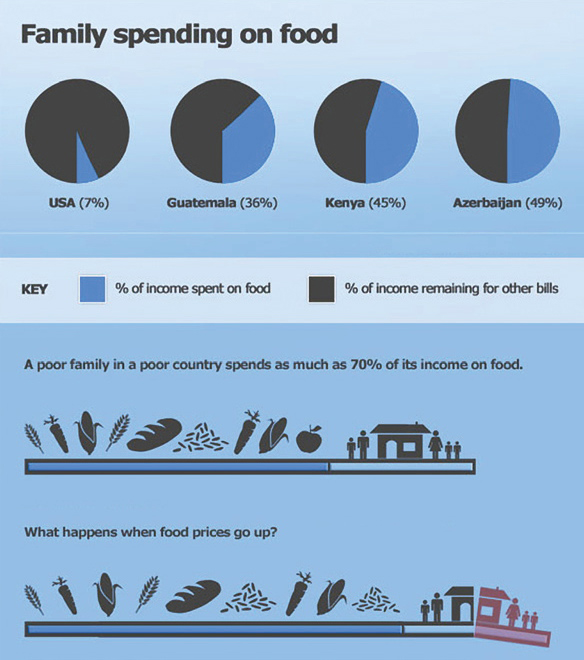 Graph of Family Spending on Food
